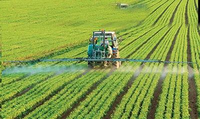 Основные направления трансформации структуры хозяйства аграрных регионов