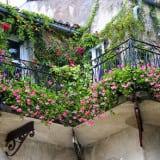 ozelenenie-balkona