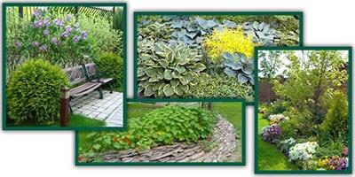 Пример озеленения и благоустройства участка