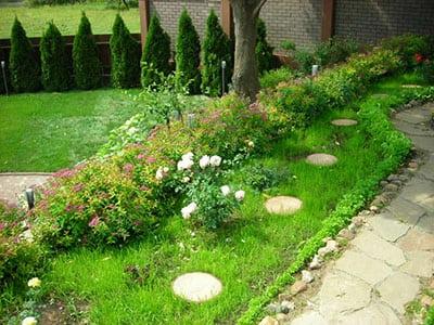 Пример озеленения территории детского садика