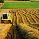 strakhovanie-agrarnogo-sektora