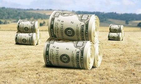 Актуальные проблемы формирования инфраструктуры аграрного рынка