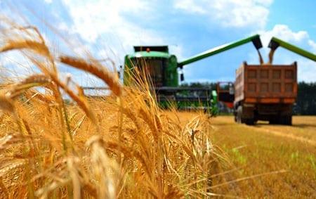 Проблемы интенсификации аграрного землепользования и пути их решения