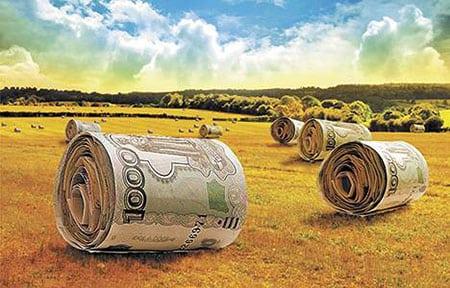 Проблемы привлечения инвестиций в сельское хозяйство