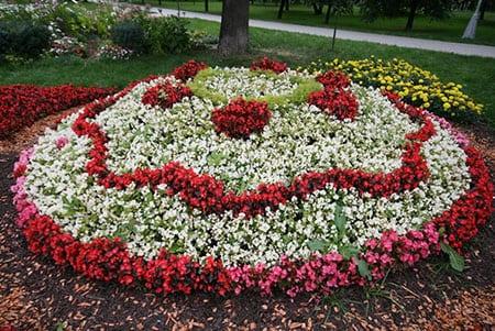 Клумба цветник