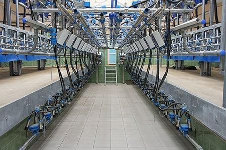Строительство молочно-товарных ферм должно осуществляться быстрее