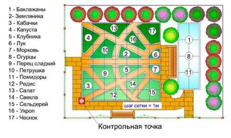 Планировка огорода самостоятельно