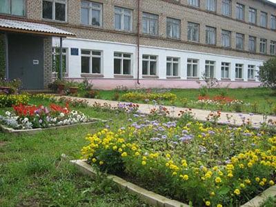 Технологические этапы озеленения школьной среды