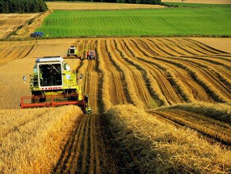 Страхование аграрного сектора