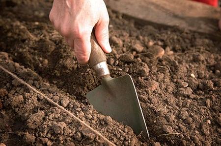 Готовим почву к весне
