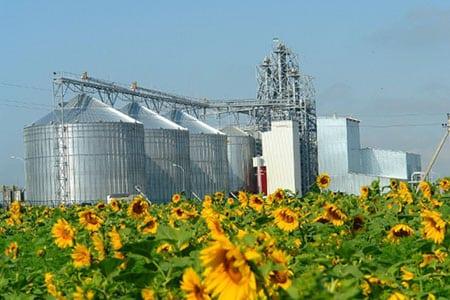 Инновационная инфраструктура в аграрном секторе экономики