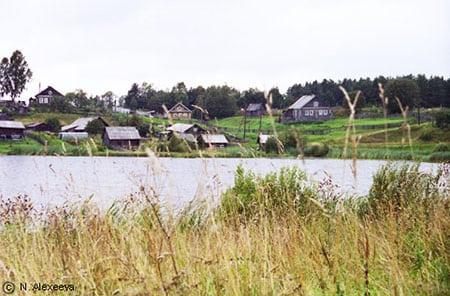 Комплексное обеспечение формирования и развития сельских территорий