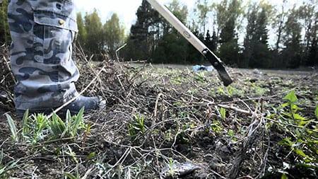 Подготовка огорода осенью к следующему сезону