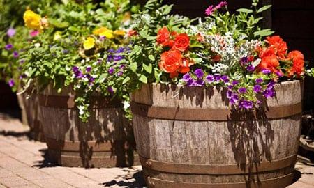 Интересные идеи для вашего сада
