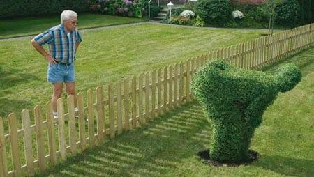 Понаблюдайте пристально за соседями на будущей даче