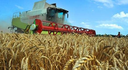 Стратегические направления развития аграрного рынка
